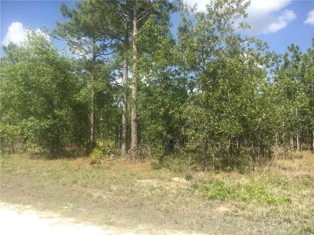 15344 Pomp Parkway, Weeki Wachee, FL 34614 (MLS #U8104302) :: Carmena and Associates Realty Group