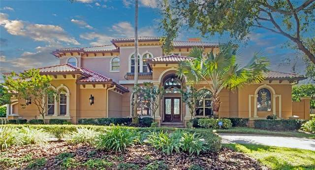 1214 Playmoor Drive, Palm Harbor, FL 34683 (MLS #U8104400) :: Baird Realty Group