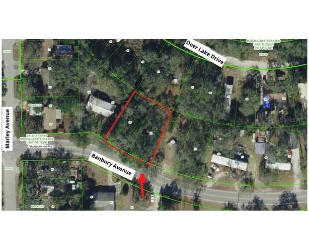 Banbury Avenue, New Port Richey, FL 34654 (MLS #U8104700) :: Delgado Home Team at Keller Williams
