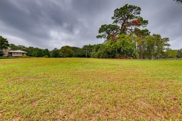 Austin Drive, Tarpon Springs, FL 34688 (MLS #U8104719) :: Young Real Estate
