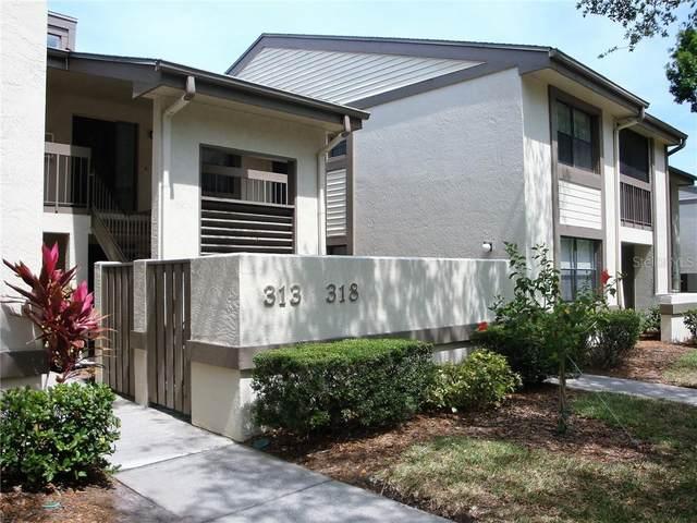 313 Woodlake Wynde, Oldsmar, FL 34677 (MLS #U8104729) :: RE/MAX Marketing Specialists