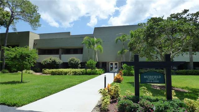 36750 Us Highway 19 N #15205, Palm Harbor, FL 34684 (MLS #U8104802) :: Visionary Properties Inc
