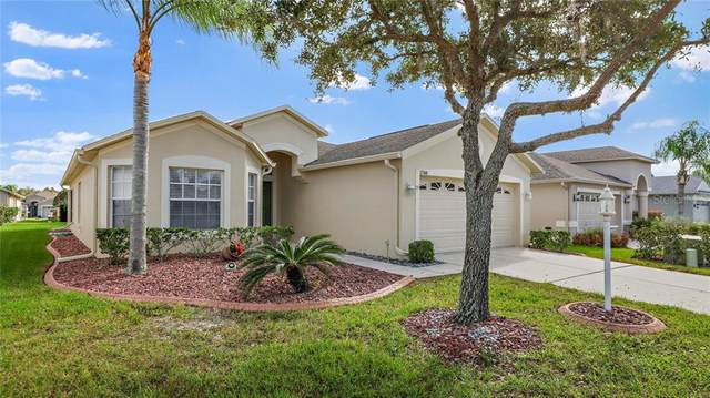 1748 Bellhurst Way, Trinity, FL 34655 (MLS #U8104810) :: RE/MAX Marketing Specialists