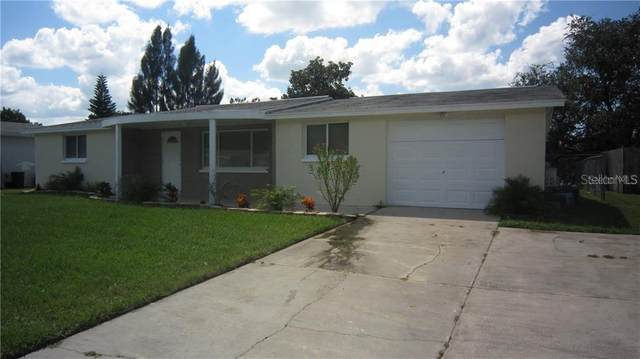 3133 Blue Bird Drive, Holiday, FL 34690 (MLS #U8105067) :: Burwell Real Estate