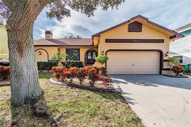 4940 Cardinal Trail, Palm Harbor, FL 34683 (MLS #U8105149) :: Frankenstein Home Team