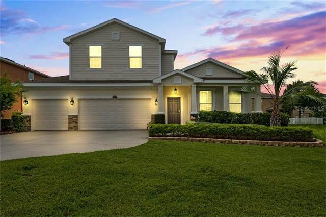 23956 Terracina Court, Land O Lakes, FL 34639 (MLS #U8105219) :: Pepine Realty