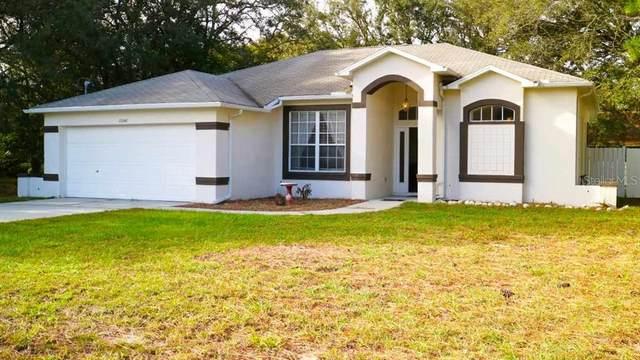 11041 Belltower Street, Spring Hill, FL 34608 (MLS #U8105262) :: Carmena and Associates Realty Group