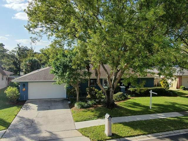 3134 Timberview Drive, Dunedin, FL 34698 (MLS #U8105349) :: RE/MAX Marketing Specialists
