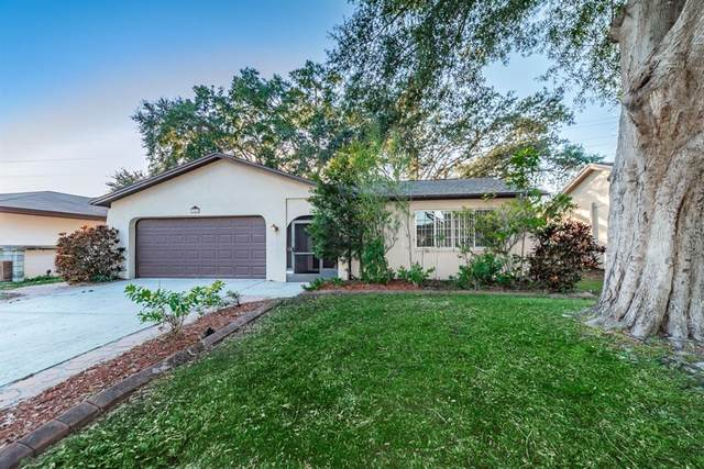1858 Citrus Hill Lane, Palm Harbor, FL 34683 (MLS #U8105384) :: Frankenstein Home Team