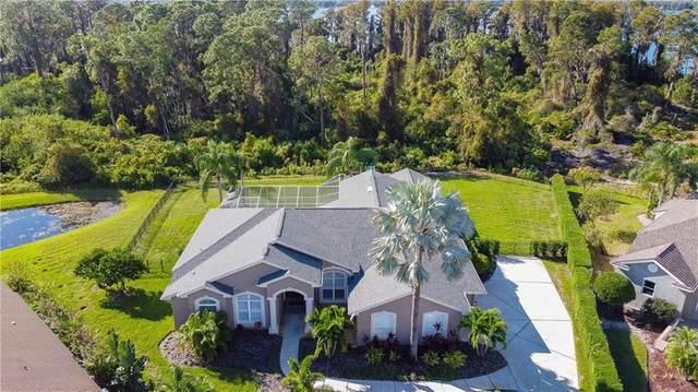 3538 Justin Drive, Palm Harbor, FL 34685 (MLS #U8105511) :: Frankenstein Home Team
