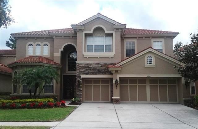 11630 Bristol Chase Drive, Tampa, FL 33626 (MLS #U8105544) :: Griffin Group