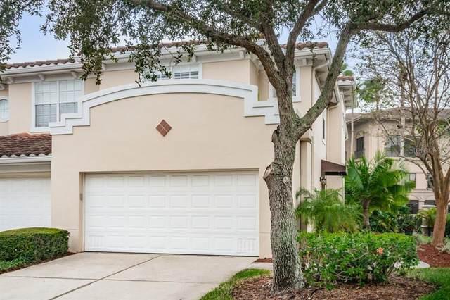 290 Valencia Circle, St Petersburg, FL 33716 (MLS #U8105553) :: BuySellLiveFlorida.com