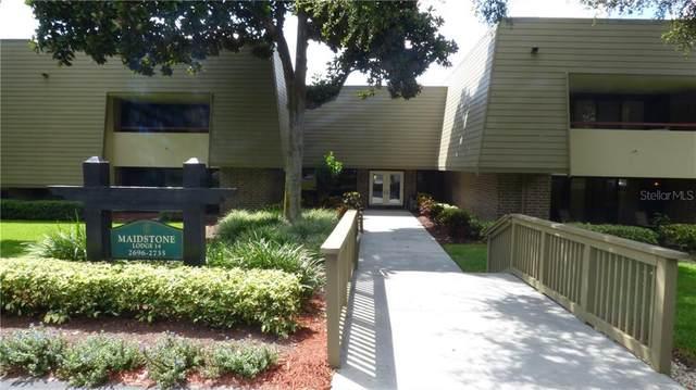 36750 Us Highway 19 N #14205, Palm Harbor, FL 34684 (MLS #U8105592) :: Alpha Equity Team