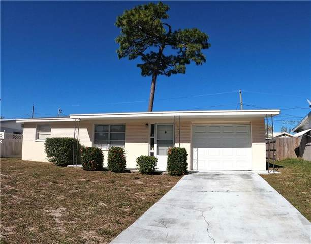 4209 Kibler Lane, Holiday, FL 34691 (MLS #U8105595) :: Baird Realty Group