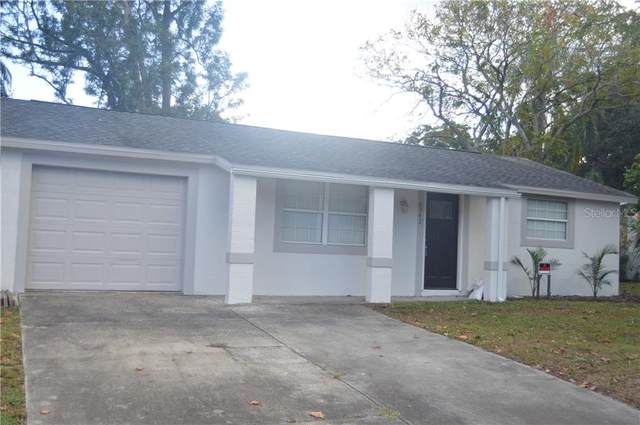 6342 Butte Avenue, New Port Richey, FL 34653 (MLS #U8105596) :: Baird Realty Group