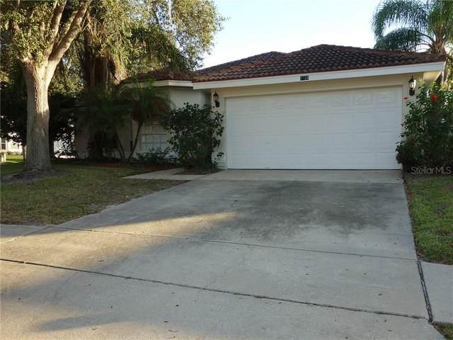 1024 Mainsail Drive, Tarpon Springs, FL 34689 (MLS #U8105610) :: KELLER WILLIAMS ELITE PARTNERS IV REALTY