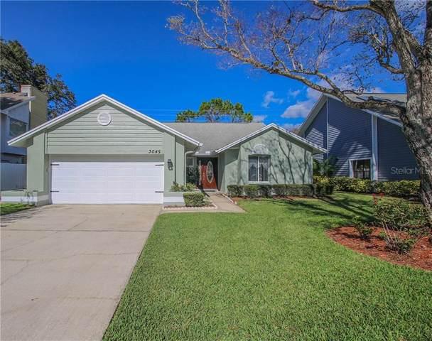 3045 Pine Forest Drive, Palm Harbor, FL 34684 (MLS #U8105633) :: New Home Partners
