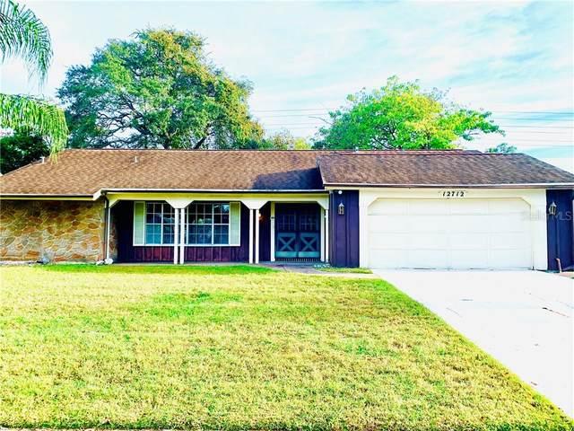12712 River Mill Drive, Hudson, FL 34667 (MLS #U8105685) :: Griffin Group