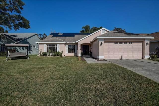 7845 Hamlet Drive, New Port Richey, FL 34653 (MLS #U8105738) :: Griffin Group