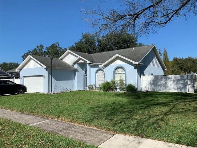 Tampa, FL 33625 :: Team Bohannon Keller Williams, Tampa Properties