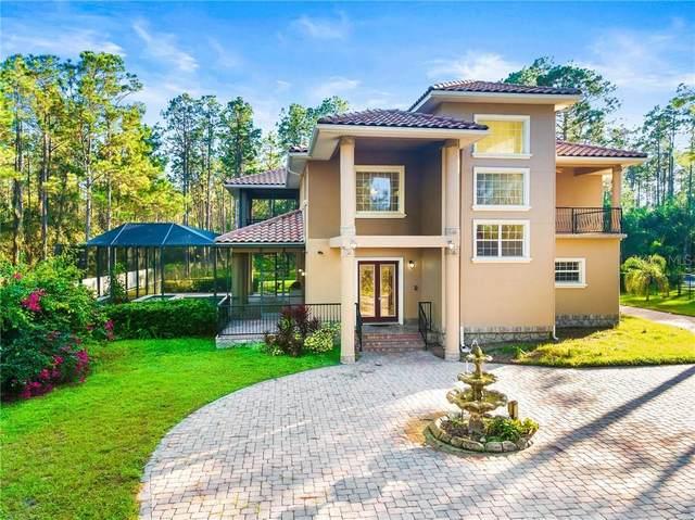 1019 Newberger Road, Lutz, FL 33549 (MLS #U8105869) :: Premier Home Experts