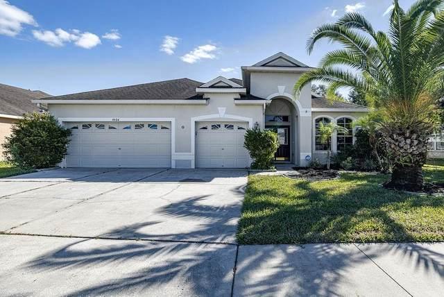 4604 Gateway Boulevard, Wesley Chapel, FL 33544 (MLS #U8105878) :: Premier Home Experts
