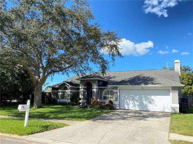 1321 Stonehenge Way, Palm Harbor, FL 34683 (MLS #U8105917) :: Burwell Real Estate