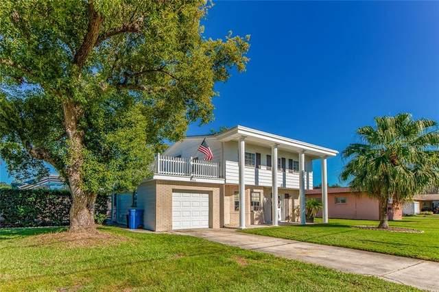 8306 Archwood Circle, Tampa, FL 33615 (MLS #U8105966) :: Griffin Group