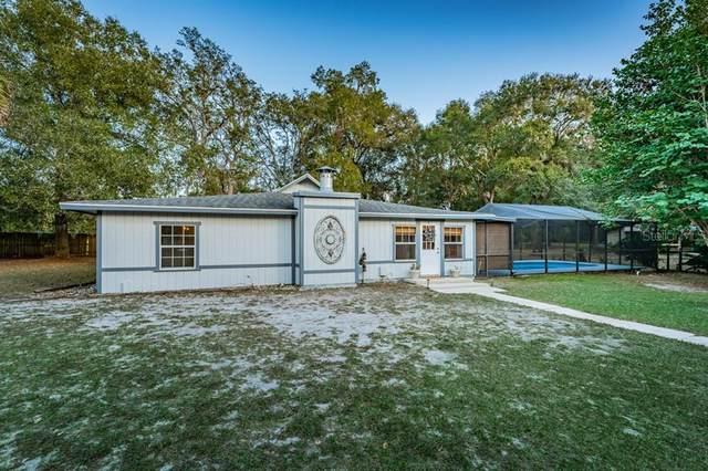 14349 Sorrel Street, Brooksville, FL 34614 (MLS #U8105978) :: Realty One Group Skyline / The Rose Team