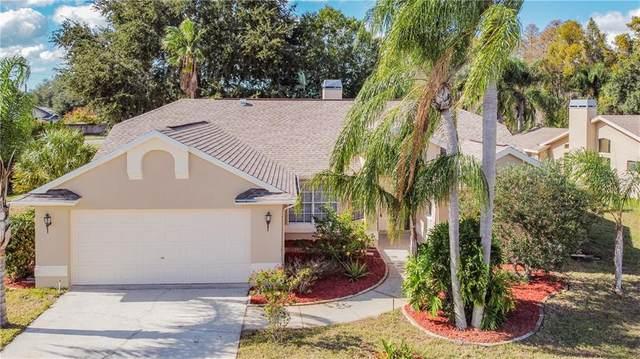 5437 El Cerro Drive, New Port Richey, FL 34655 (MLS #U8105998) :: RE/MAX Marketing Specialists