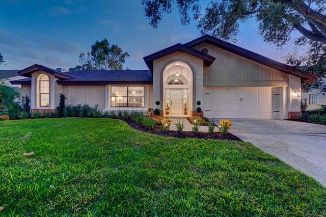3268 Cobbs Drive, Palm Harbor, FL 34684 (MLS #U8106002) :: Premier Home Experts
