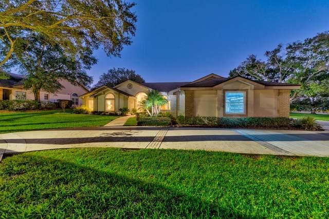 2992 Elysium Way, Clearwater, FL 33759 (MLS #U8106003) :: Heckler Realty