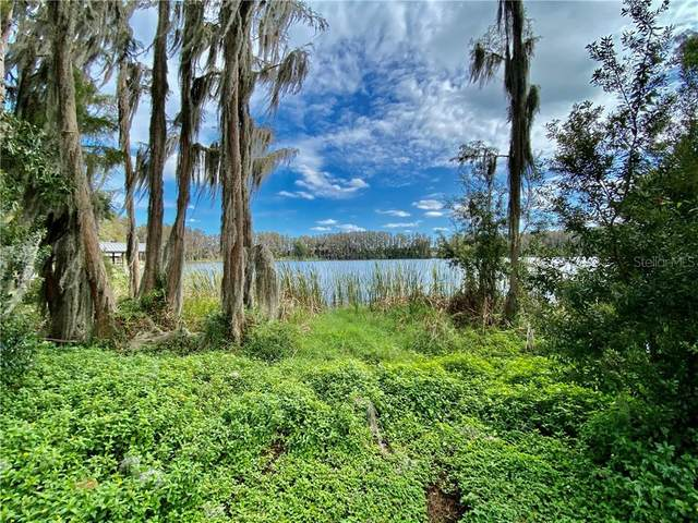 Wisteria Loop, Land O Lakes, FL 34638 (MLS #U8106018) :: Team Bohannon Keller Williams, Tampa Properties
