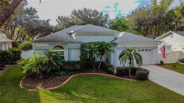 2006 Otter Way, Palm Harbor, FL 34685 (MLS #U8106022) :: Burwell Real Estate