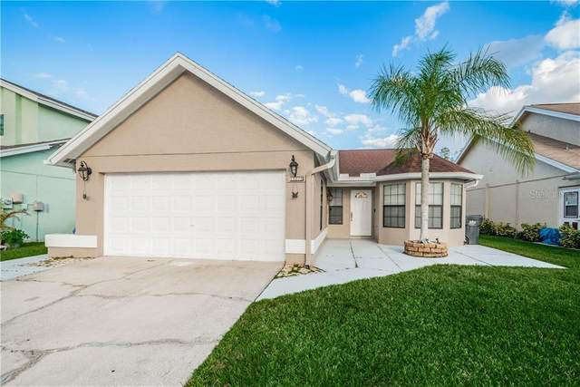 11225 Shadybrook Drive, Tampa, FL 33625 (MLS #U8106049) :: Team Borham at Keller Williams Realty