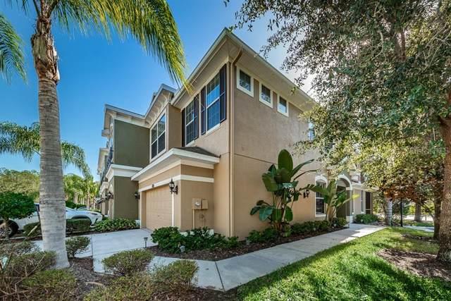 12609 Silverdale Street, Tampa, FL 33626 (MLS #U8106057) :: Delta Realty, Int'l.