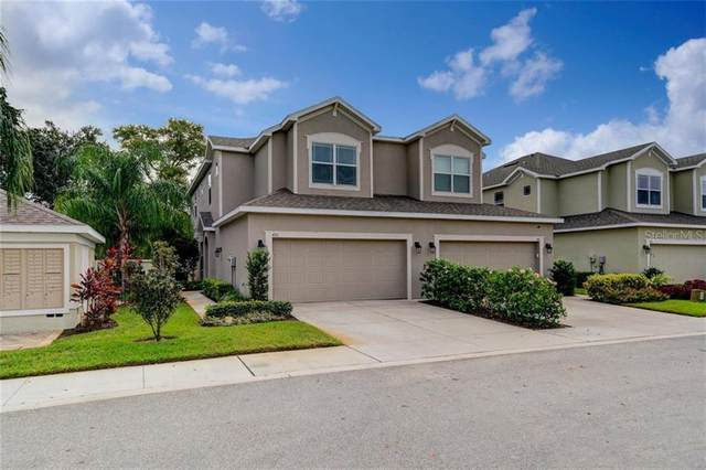 450 Harbor Springs Drive, Palm Harbor, FL 34683 (MLS #U8106074) :: Griffin Group