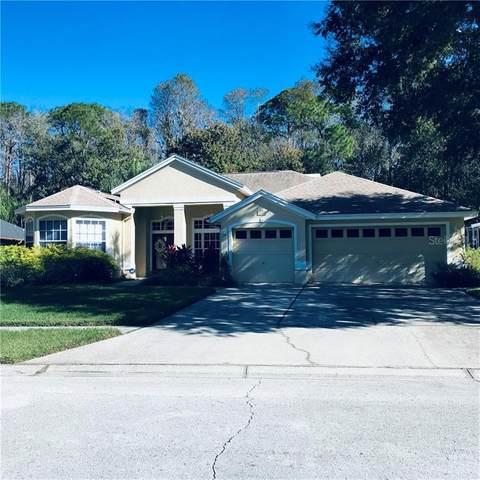 4482 Fallbrook Boulevard, Palm Harbor, FL 34685 (MLS #U8106180) :: Delta Realty, Int'l.