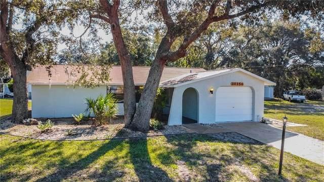 10354 Bannock Street, Spring Hill, FL 34608 (MLS #U8106246) :: Bridge Realty Group