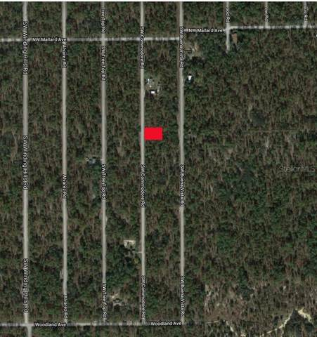 0 SW Commodore Road, Dunnellon, FL 34431 (MLS #U8106695) :: Young Real Estate