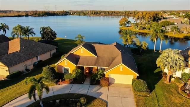 1751 Daylily Drive, Trinity, FL 34655 (MLS #U8107461) :: Premier Home Experts
