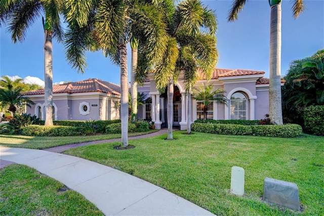 10228 Golden Eagle Drive, Seminole, FL 33778 (MLS #U8107510) :: Everlane Realty