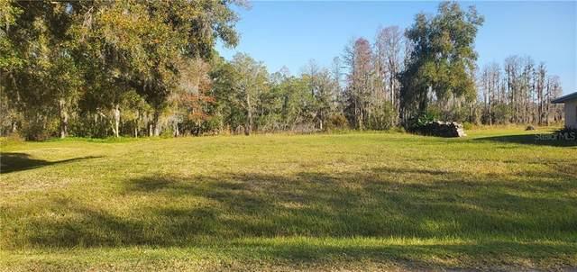 11120 Lake Shore Drive, Land O Lakes, FL 34639 (MLS #U8107614) :: Vacasa Real Estate