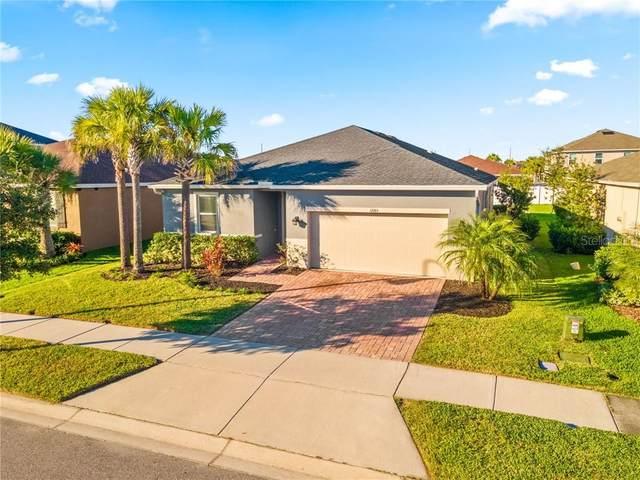 12165 Lake Boulevard, Trinity, FL 34655 (MLS #U8108002) :: Premier Home Experts