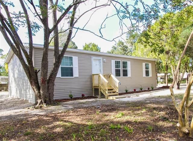 12123 Litewood Drive, Hudson, FL 34669 (MLS #U8108143) :: Griffin Group