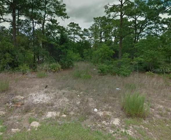 7920 N Primrose Drive, Citrus Springs, FL 34434 (MLS #U8108161) :: EXIT King Realty