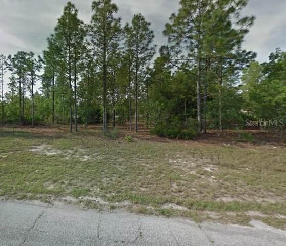 2828 W Parnell Lane, Citrus Springs, FL 34433 (MLS #U8108178) :: CENTURY 21 OneBlue