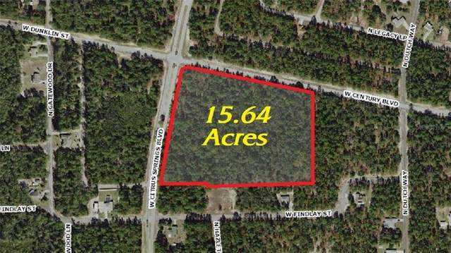 4631 W Citrus Springs Boulevard, Citrus Springs, FL 34433 (MLS #U8108614) :: Griffin Group