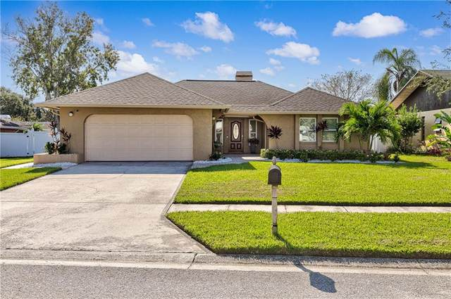 1064 Lemon Tree Lane, Palm Harbor, FL 34683 (MLS #U8108909) :: Griffin Group