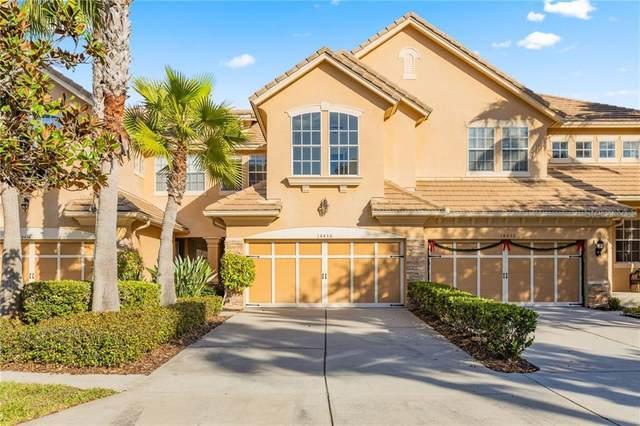 14456 Mirabelle Vista Circle, Tampa, FL 33626 (MLS #U8109104) :: Griffin Group